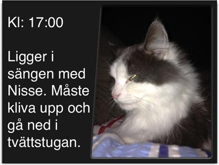 Kl: 17:00
